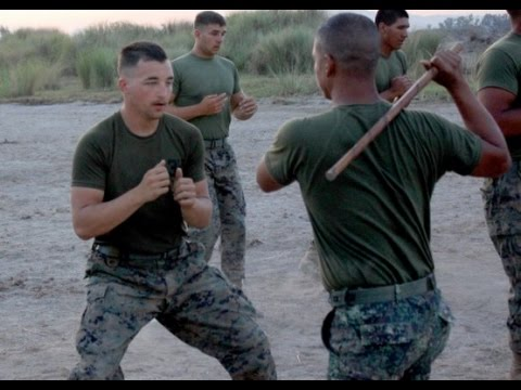 COMBATIVES, UNITED STATES OF AMERICA